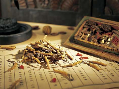 Chinese Herbs for Eye
