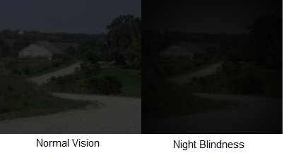 Different between normal vision and night blindness